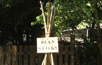 Bean Stick Planetrs from Sussex Timber Co